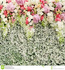 wedding backdrop flower wall colorful flowers with green wall for wedding backdrop stock photo