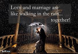 wedding quotes rainy day best wedding quotes about and laughter my