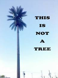 this is not a tree