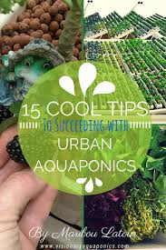 recommended resources visionary aquaponics