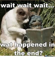 Reading Meme - reading cat 3 lol by brassrhino meme center