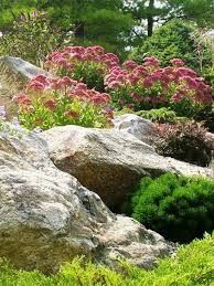 Water Rock Garden Low Water Rock Gardens Hgtv