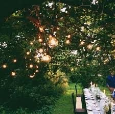 globe lights in trees long reception tables at sunset perfect