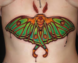 unique traditional butterfly on stomach