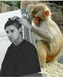 reverse monkey haircut know your meme