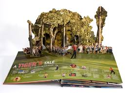wow the pop up book of sports paperpops