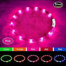 light up collar amazon amazon com led dog collar usb rechargeable glowing pet dog