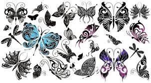 beautiful butterflies design butterfly eps free vector