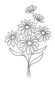 margarita drawing eletragesi daisy drawing images