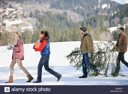 couples and dog carrying fresh cut christmas tree and gifts in
