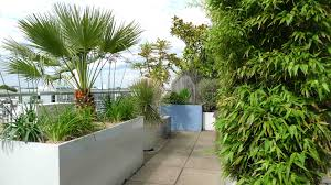 Garden Roof Ideas Roof Terrace Designs Rooftop Terrace Garden Design Rooftop