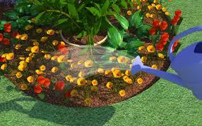 amazing design ideas planting a flower garden remarkable flower