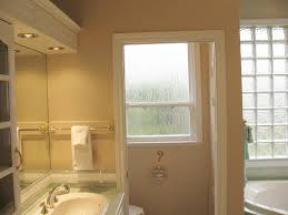 Bathroom Window Ideas For Privacy Bathroom New Frosted Windows For Bathrooms Remodel Interior
