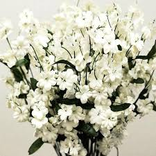 silk baby s breath silk baby breath ivory 12 pk silk flowers factory
