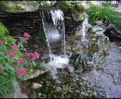 aquascape for a eclectic landscape with a landscape contractor and