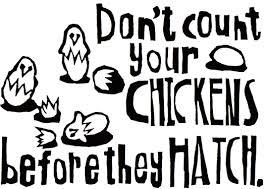 Don Count The Chicken Before They Hatch Slides Harriet Plaskitt