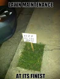 Funny Meme Pictures 2014 - keep off the grass best memes of 2014