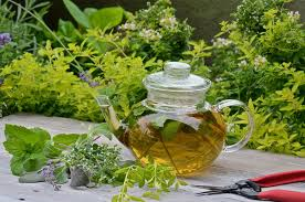 herbal garden 19 best tea herbs to make a tea herb garden