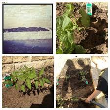 simple garden ideas a thrifty diva