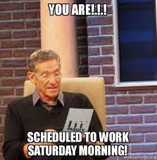 Saturday Morning Memes - you are scheduled to work saturday morning maury povich