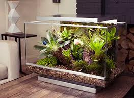 reptile terrariums stands u0026 accessories reptile centre