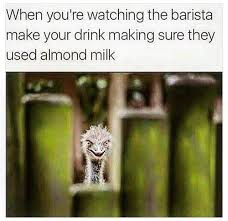 Memes Vegetarian - when you re watching the barista make your drink making sure they