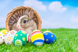 bunny easter the strange history of the easter bunny nsnbc international