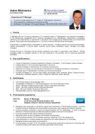 Resume In English Of Resume In English