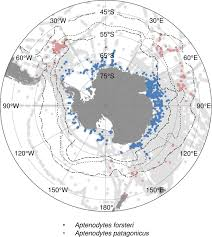 Southern Ocean Map An Atlas Of Marine Species In The Antarctic U0027s Changing Climate