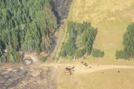 Wildfire Bc Perimeter Map by Aerial View Shows Widespread Devastation Around Williams Lake