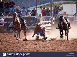 steer wrestling also known as bulldogging competition at mt