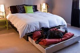 how to build your own platform bed with a roll out dog bed