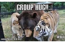 Group Hug Meme - group hug meme pictures to pin on pinterest thepinsta
