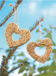diy bird seed ornaments oak express