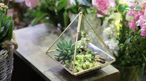 ncyp hanging vertical copper glass geometric terrarium with