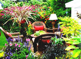 outdoor backyard flowers affordable landscape ideas astonishing