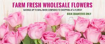 fresh flowers in bulk ifloral farm fresh wholesale flowers direct to consumer