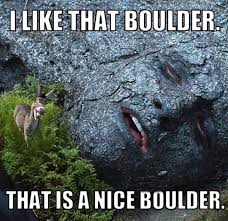 41 hilarious donkey memes images gifs pictures photos picsmine