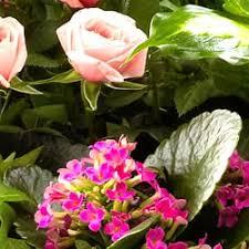 flowers jacksonville fl brenda gail flowers flowers gifts 7952 normandy blvd