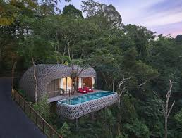 treetop hotels latest up trend in hospitality travel news