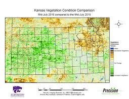 Kansas vegetaion images K state agronomy eupdate issue 581 july 22nd 2016 gif