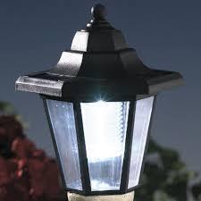 Rite Aid Home Design Solar Lights Amazon Com Bits And Pieces Solar Boston Terrier Lantern Solar