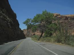 moab lions back moab u0026 fracking u0026 climate change u0026 elevated river bikeways u2026by jim
