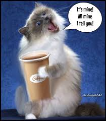 Friday Coffee Meme - coffee meme home facebook