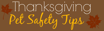 thanksgiving pet safety jacksonville humane society