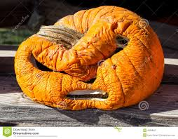 rotten pumpkin clipart collection