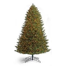 signature fraser fir artificial pre lit tree frontgate