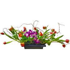 boca raton florist tulips and orchids pb6975 125 00 boca raton fl