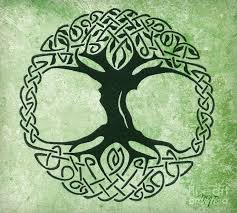 celtic symbol for brother celtic tree of life drawing by mindy