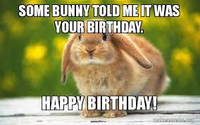 rabbit birthday some bunny told me it was your birthday happy birthday
